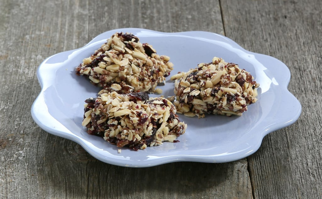 No-bake Blueberry Granola Bites