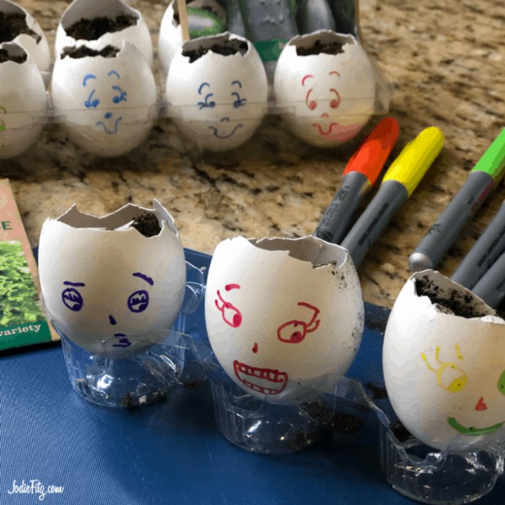 egg shells in a clear carton that are cracked at the top and filled with dirt with colorful silly faces drawn on them with markers